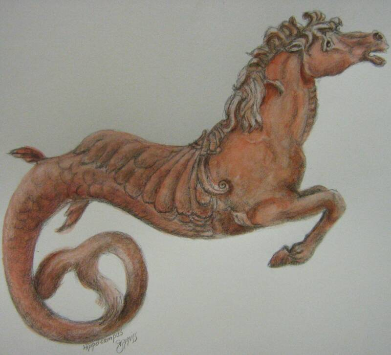 Hippocampus – Watercolor Graphite Study